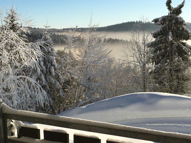 Blick von der Terrasse bei Schnee